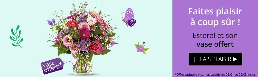 Bouquet Esterel et son vase offert