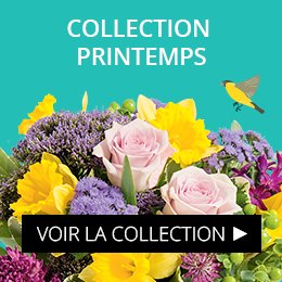 Collection Printemps