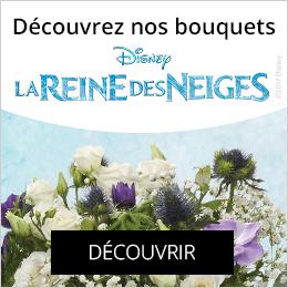 Bouquets la reine des neiges