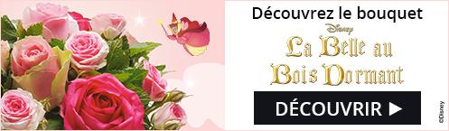 Bouquet Aurore La belle au bois dormant disney