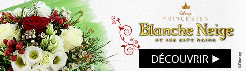 Découvrez notre bouquet Disney Princesse Blanche Neige