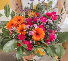 Que signifient les couleurs des fleurs ?