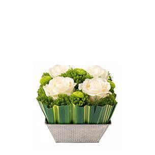 Bouquet de roses Ouate Naissance