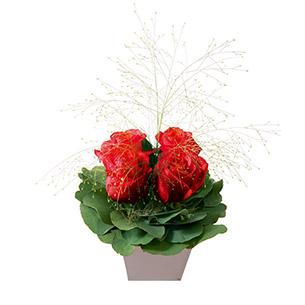 Bouquet de roses Poudré rouge Amour