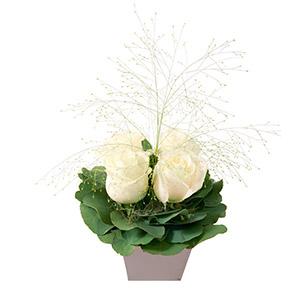 Bouquet de roses Poudré blanc Mariage invité