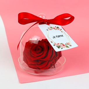 Fleurs et cadeaux Rose éternelle sous cloche Amour