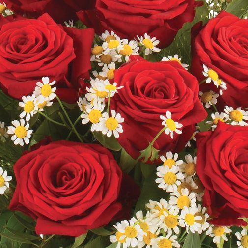 Bouquet de roses Rouge idylle