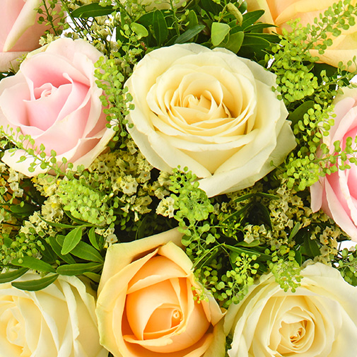 Bouquet de roses Rose melba