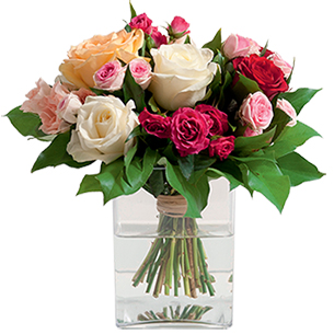 Bouquet de roses Sentiment Naissance