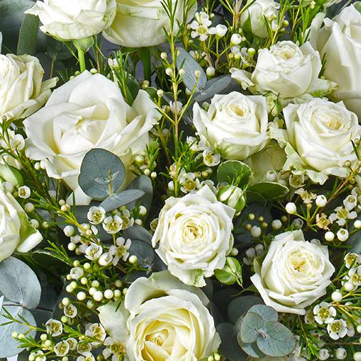 Bouquet de roses Vert coton