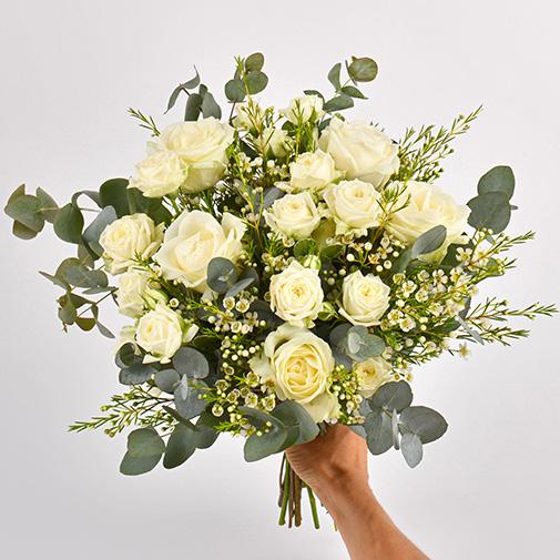 Bouquet de roses Vert coton et son champagne Devaux