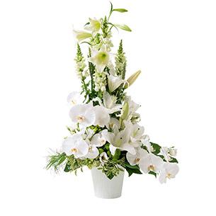 Composition florale Athéna Mariage invité