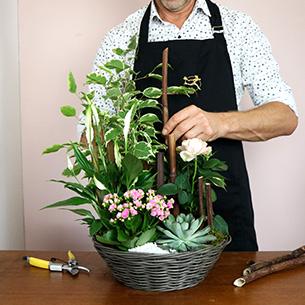Bouquet de fleurs Bois joli Collection Hommes