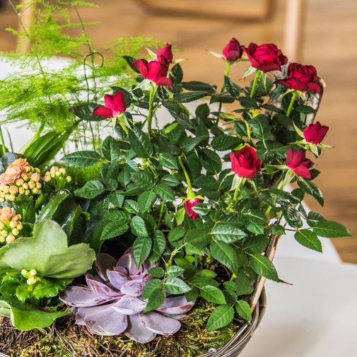 Bouquet de fleurs Bois joli