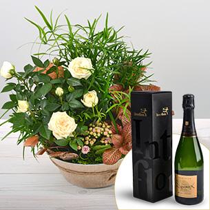 Plantes vertes et fleuries Coin de paradis et son champagne Devaux Remerciements