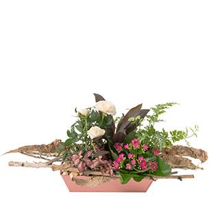 Plantes vertes et fleuries Lucky Mariage invité