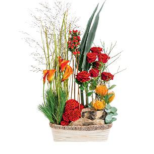 Fleurs deuil Jardin du souvenir Deuil