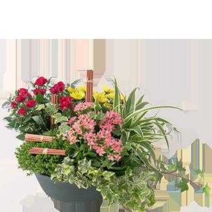 Fleurs deuil Orée Toussaint