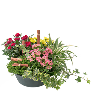 Fleurs deuil Orée Deuil