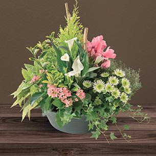 Fleurs deuil Sérénité Deuil