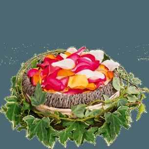 Fleurs deuil Pétale du souvenir Deuil