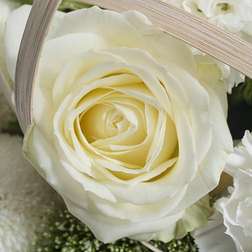 Fleurs deuil Astre