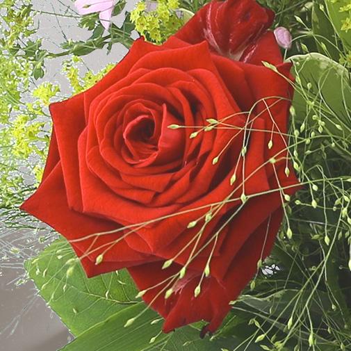 Bouquet de fleurs Tendre bisou