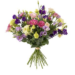 Fleurs et cadeaux Brassée de lisianthus Naissance