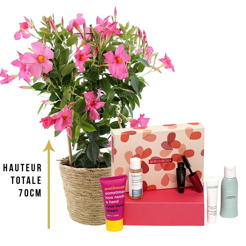 Fleurs et cadeaux Dipladénia et sa box beauté Birchbox