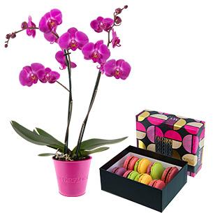 Fleurs et cadeaux Amour de macarons FAUCHON Anniversaire