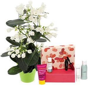 Fleurs et cadeaux Stéphanotis et sa box beauté Birchbox Fête des Mères