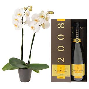 Fleurs et cadeaux Bulle de joie Veuve Clicquot Naissance