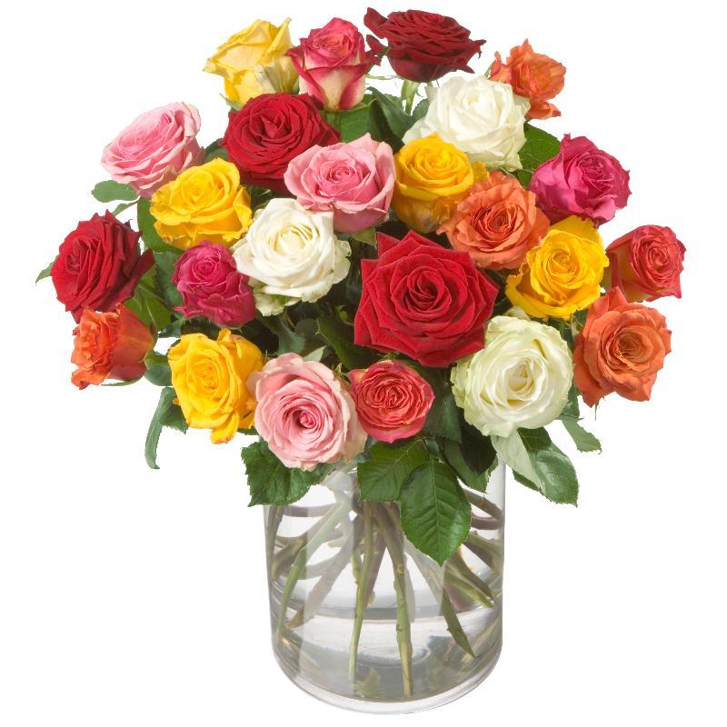 Bouquet de fleurs Colorful Bouquet of Roses (24 roses)