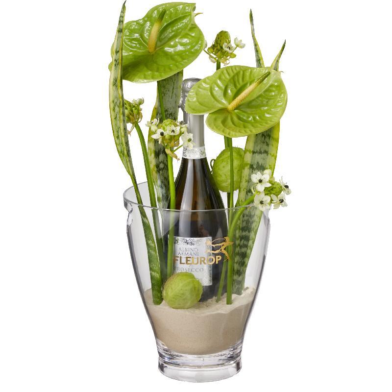 Bouquet de fleurs Elegance: Prosecco Albino Armani DOC (75 cl) incl. ice bucke