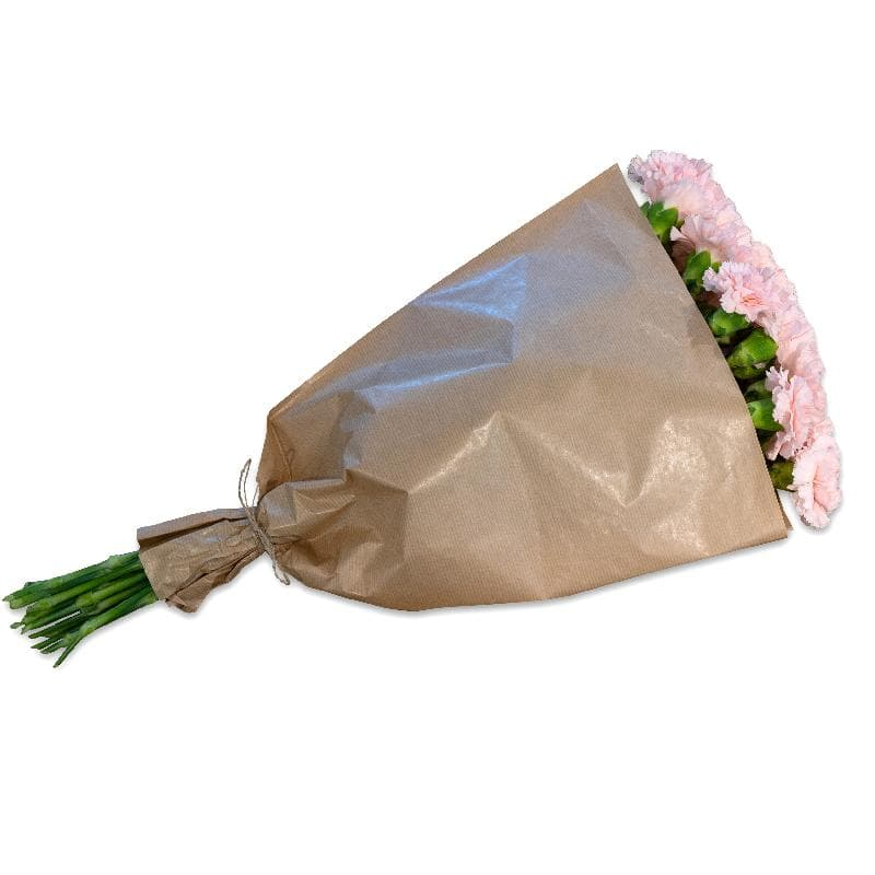 Bouquet de fleurs Bundle of pink Carnations