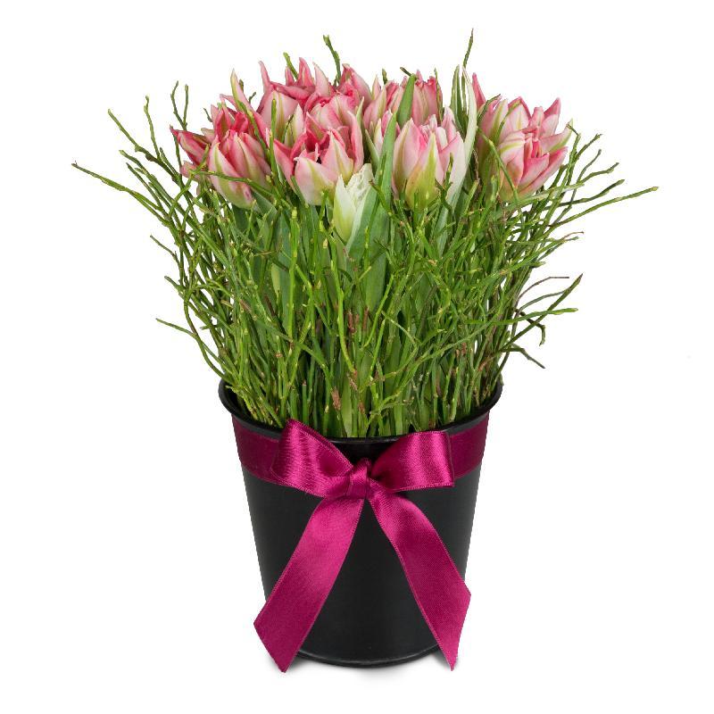 Bouquet de fleurs Spring meadow (arrangement)