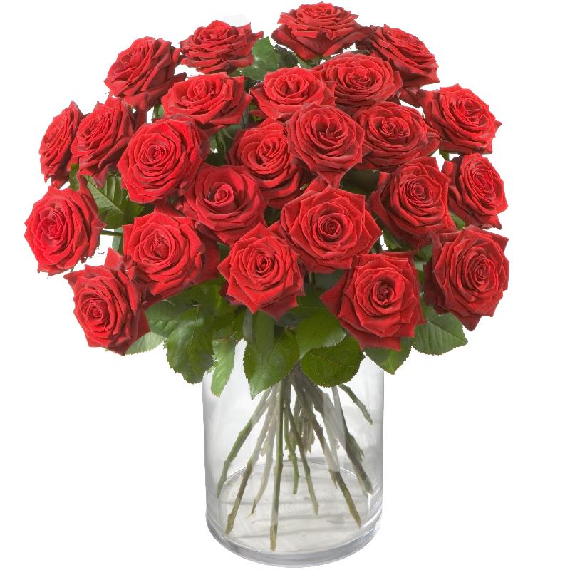 Bouquet de fleurs 24 Red Roses