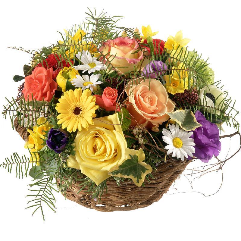 Bouquet de fleurs Colorful Spring Meadow