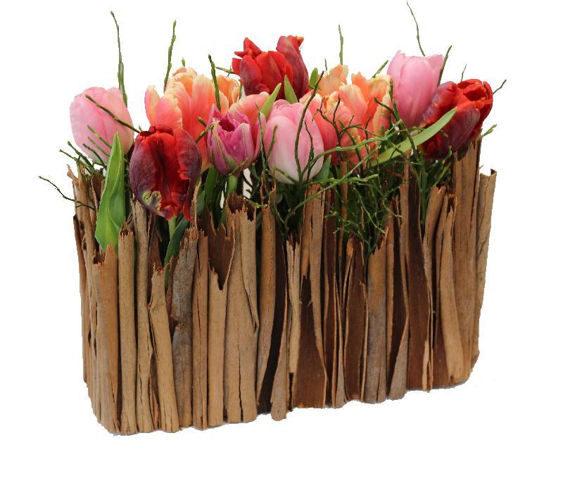 Bouquet de fleurs Stylish Miniature Tulip Garden