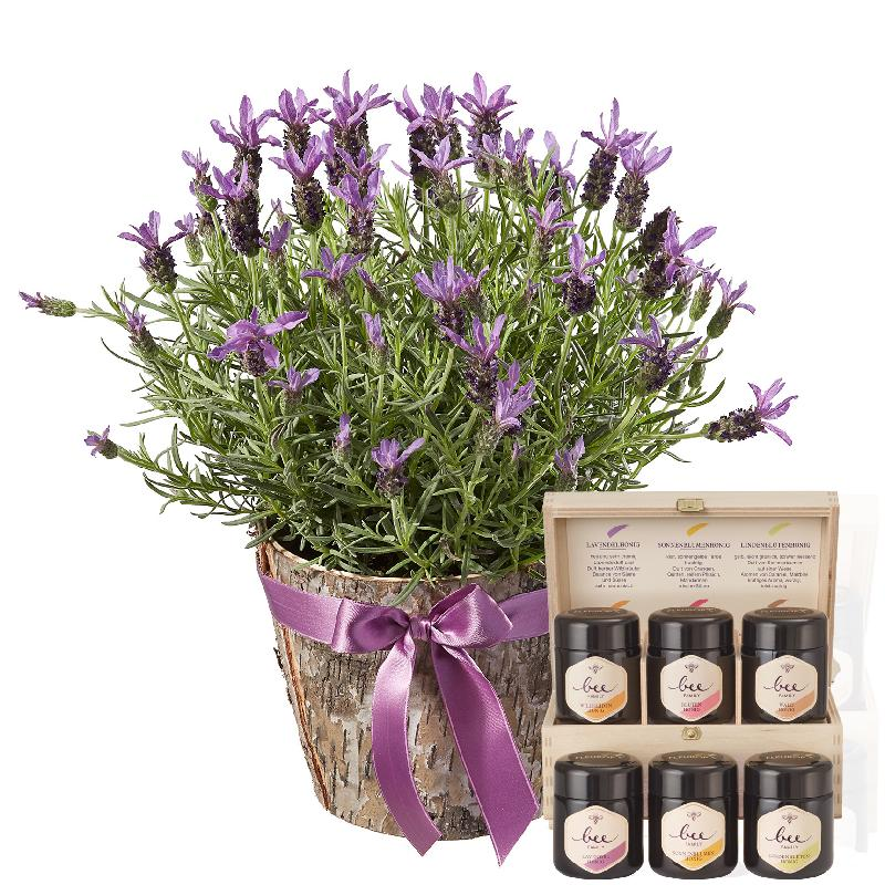 Bouquet de fleurs Scented Summer Greeting with honey gift set
