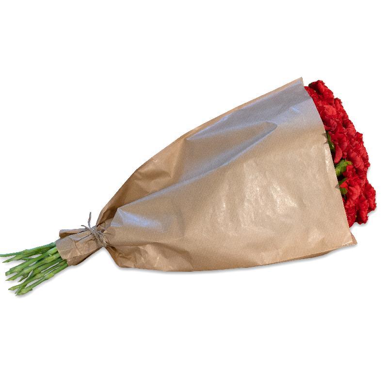 Bouquet de fleurs Bundle of red Carnations