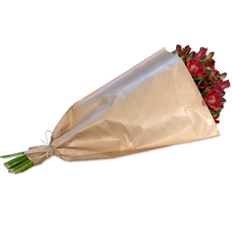 Bouquet de fleurs Bundle of red Alstroemeria