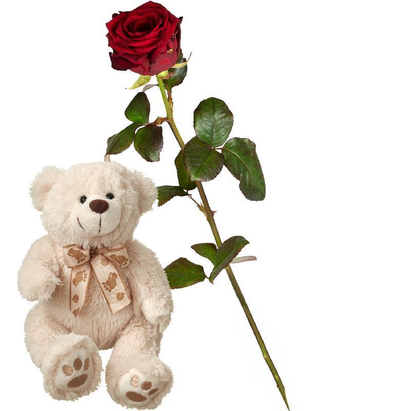 Bouquet de fleurs 1 Red Rose with teddy bear (white)