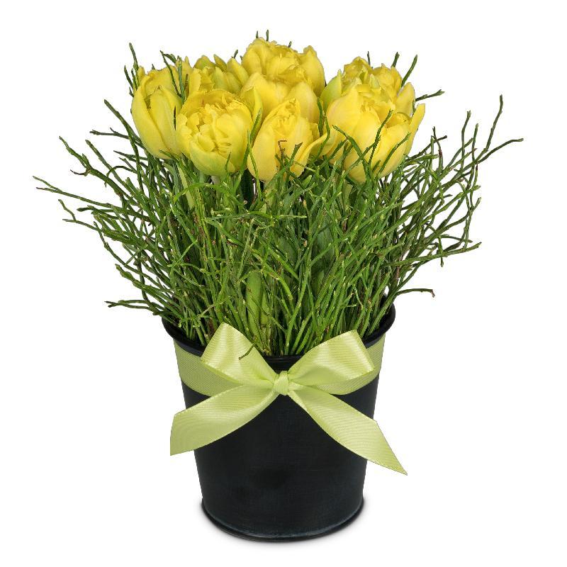 Bouquet de fleurs Spring-Hit (arrangement)