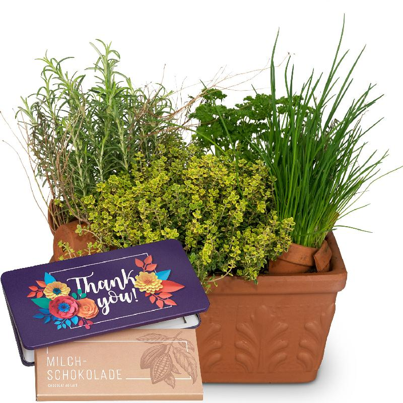 """Bouquet de fleurs Herb Box (planted) with bar of chocolate """"Thank you"""""""