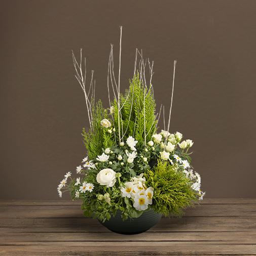 Fleurs deuil Coupe de plantes d'extérieur blanches