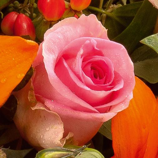Fleurs deuil Panier rond de fleurs variées multicolores