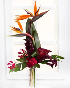 Bouquet de fleurs Exotic Bouquet