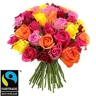 Bouquet de roses Brassée de roses multicolores + 10 roses offertes Max Havelaar Amour