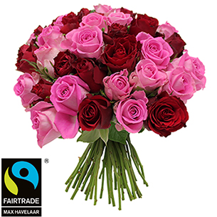 Bouquet de roses Brassée de roses roses et rouges + 10 roses offertes Max Havelaar Amour